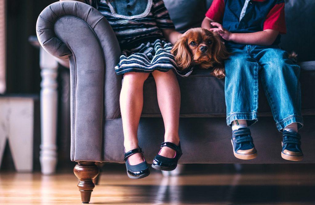 deux enfants assis sur un canapé gris avec un chien couché entre eux deux