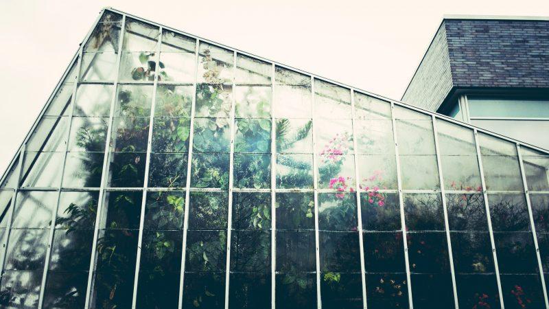 Comment créer un jardin d'hiver dans une véranda ?